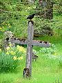 Kors Thorshavn Kirkegård.JPG