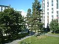 Kortepohja student house view.jpg