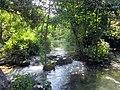 Krka cascade - panoramio.jpg