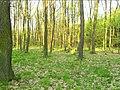 Kunratický Forest Centr 10, Prague.jpg