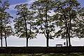 Kuressaare - panoramio (11).jpg
