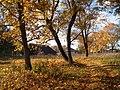Kurklių sen., Lithuania - panoramio (1).jpg