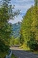 La strada che non porta al Lesima - panoramio.jpg