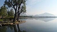 Lago di Alserio.jpg