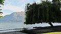 Lake Esplanade, Queenstown (482941) (9484809064).jpg