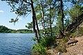 Lake Yastrebinoye - Shore and Trees.jpg