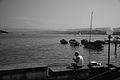 Lake Zurich (7889393442).jpg