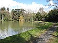 Lakeside path, Eastnor Castle - geograph.org.uk - 745483.jpg