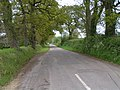 Lane to Sampford Peverell near Muddifords Farm - geograph.org.uk - 1304390.jpg