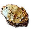 Lasca de Atapuerca.jpg