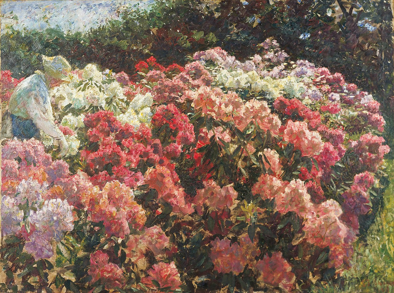 Laurits Tuxen - Rhododendron i Dagminnes have (1917).jpg