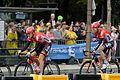 Le Tour de France 2015 Stage 21 (20154417176).jpg
