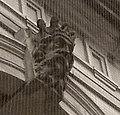 Leeds Town Hall (39).JPG