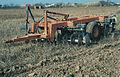 Les Plantes Cultivades. Cereals. Imatge 201.jpg
