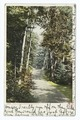 Leslie Avenue, Mackinac Island, Mich (NYPL b12647398-68566).tiff