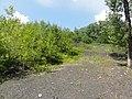 Ligny-lès-Aire - Terril n° 32, Transvaal 2 Sud (06).JPG