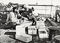 Lillie and Dr. Levick sorting a trawl catch.jpg