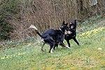 Lilo a Wesley an der Péitruss-102.jpg