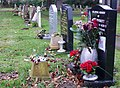 Line of headstones on graves in Mudford cemetery, Somerset.jpg