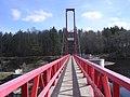 Linnamäe Hydroelectric Power Plant - panoramio - Aulo Aasmaa (3).jpg