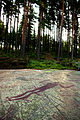 Litsleby rock carving Sweden 1.jpg