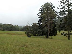 Clagiraba, Queensland - Little Clagiraba Reserve, 2016