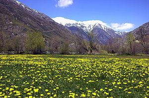 Cerdanya - Spring landscape of the Cerdanya in Llívia.