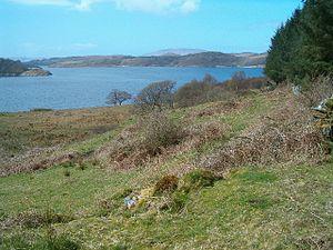Eilean Mhic Chrion - Eilean Mhic Chrion from near Ormaig