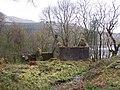 Loch Eck, Benmore-Glenbranter Forestry Road - geograph.org.uk - 159902.jpg