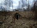 Lociki, Naujene Parish, Latvia - panoramio - alinco fan (16).jpg