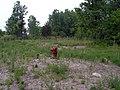 Lone Hydrant - panoramio.jpg