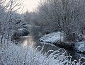 Looking along the river in winter - geograph.org.uk - 1624074.jpg