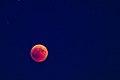 Lunar Eclipse 2018 SG 020 (29823674668).jpg