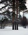 Lyovintsy, Kirovskaya oblast', Russia, 612079 - panoramio (62).jpg