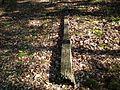 MOs810 WG 15 2016 (Pyzdry Forest II) (Anielewo, old ev. cemetery) (central cross) (2).JPG