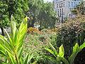 Madeira em Abril de 2011 IMG 1752 (5663769554).jpg