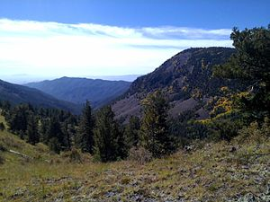 Magdalena Mountains - The view looking southwest at Sawmill Canyon, near the Langmuir Research Site in the Magdalena Mountains.