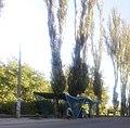 Magistral Street in Zaporizhia 1.jpg