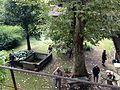 Maison Delorme - vue depuis la galerie supérieure.JPG