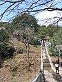 MalaNambi Steps.jpg