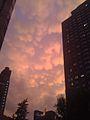Mammatus clouds NYC.jpg