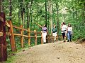 Mammoth Cave National Park TRAILGRO.jpg