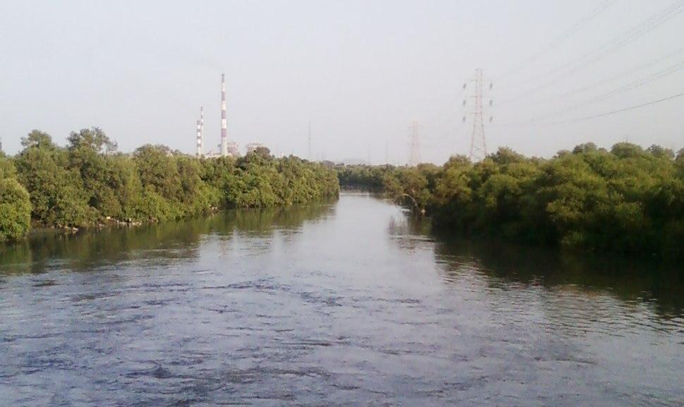 Mangrove Garden Wadala