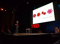 Margaret Wertheim speaking at TED in 2009.jpg