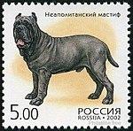 Mastino-Napoletano-Canis-lupus-familiaris Russia 2002.jpg