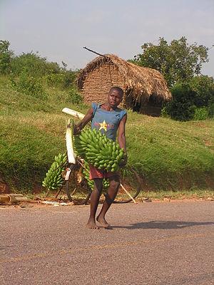 Matoke - Matoke seller in Uganda