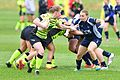 May 2017 in England Rugby JDW 7919-1 (34509406442).jpg
