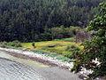 Medicine Beach Nature Reserve (7799168430).jpg