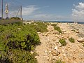 Mellieha, Malta - panoramio (1078).jpg