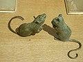 Mice in window display @ Paris.jpg